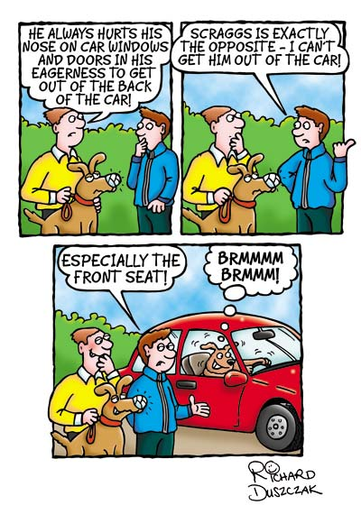 dog cartoon strip, scraggs the dog comic strip. Scraggs sat in car drivi