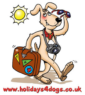 dog cartoon - cartoon of a dog carrying his holiday suitcase. He has sun glasses in his hand, the sun is shining in the background and he has a camera around his neck
