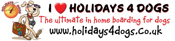 bumper sticker - cartoon of dog. I love Holidays for dogs. Doggy cartoon, happy dog cartoon